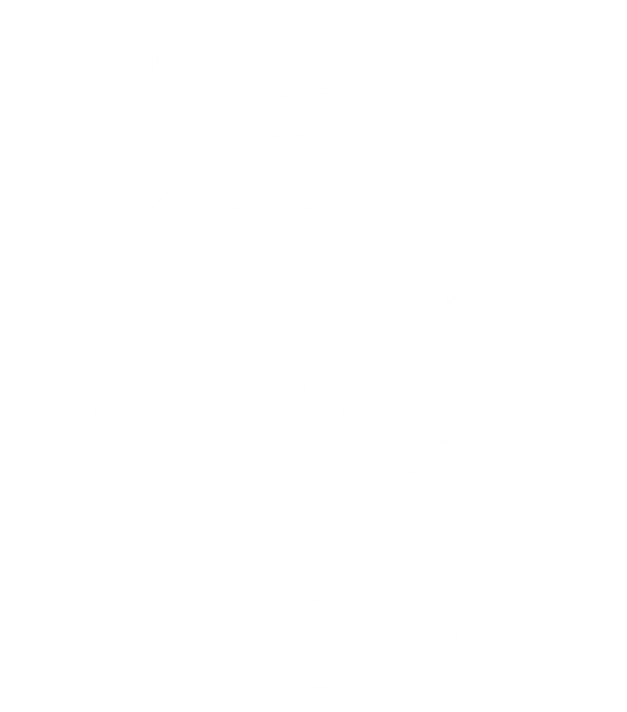 Hubcap Stealers